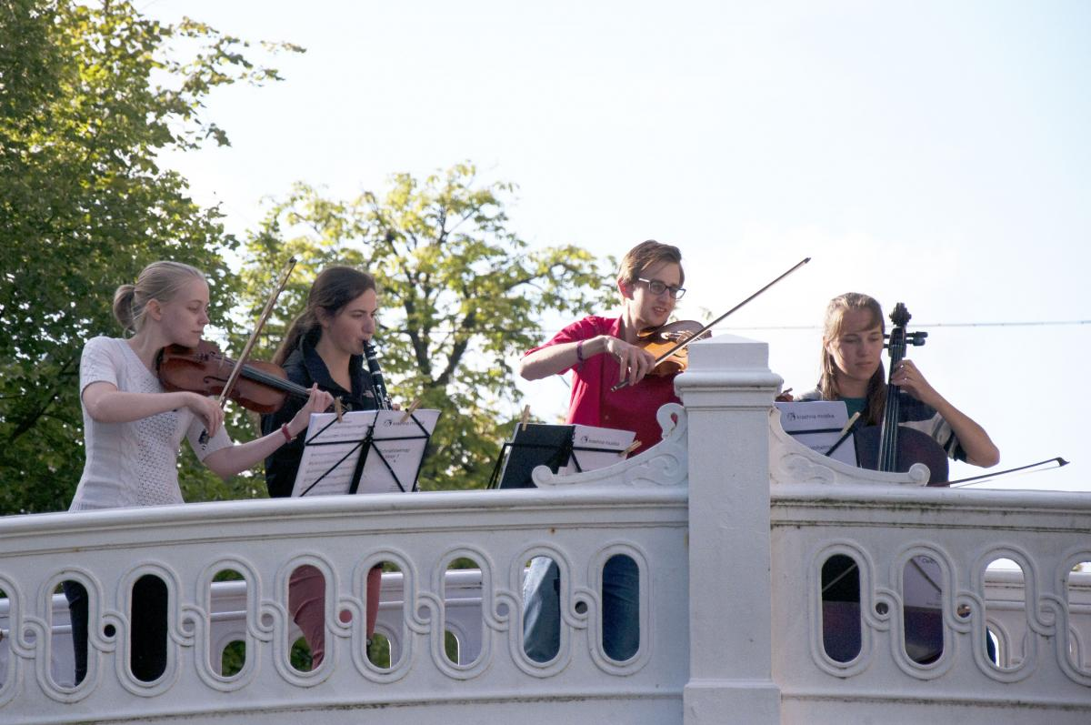 chamber music, amateurs, string and wind players, music vaction, summer festival